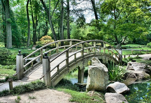 Japanese Garden: How Will You Build One?