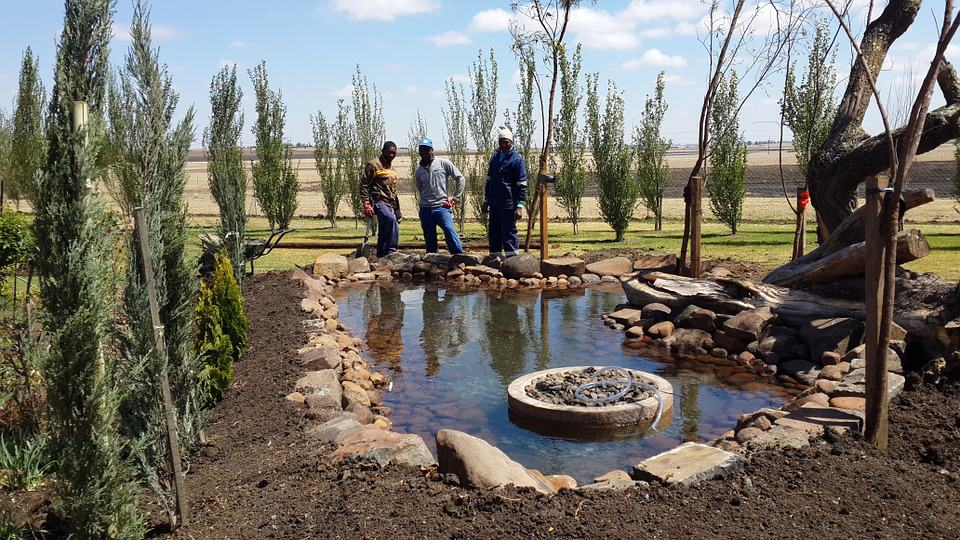 Easy Way to Clean Your Fishpond