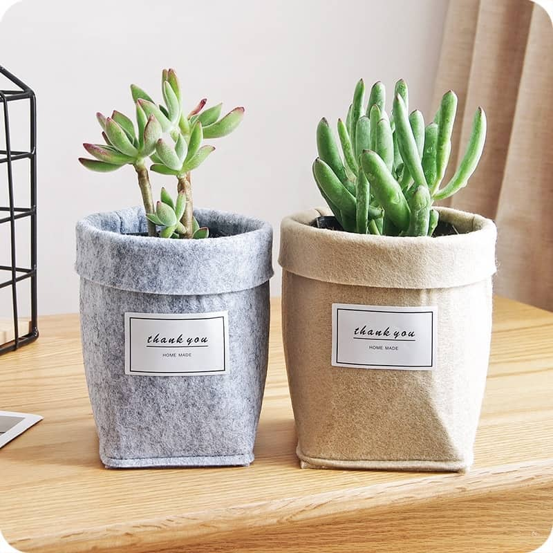 Ideal Indoor Garden: Plant Containers Table Decoration
