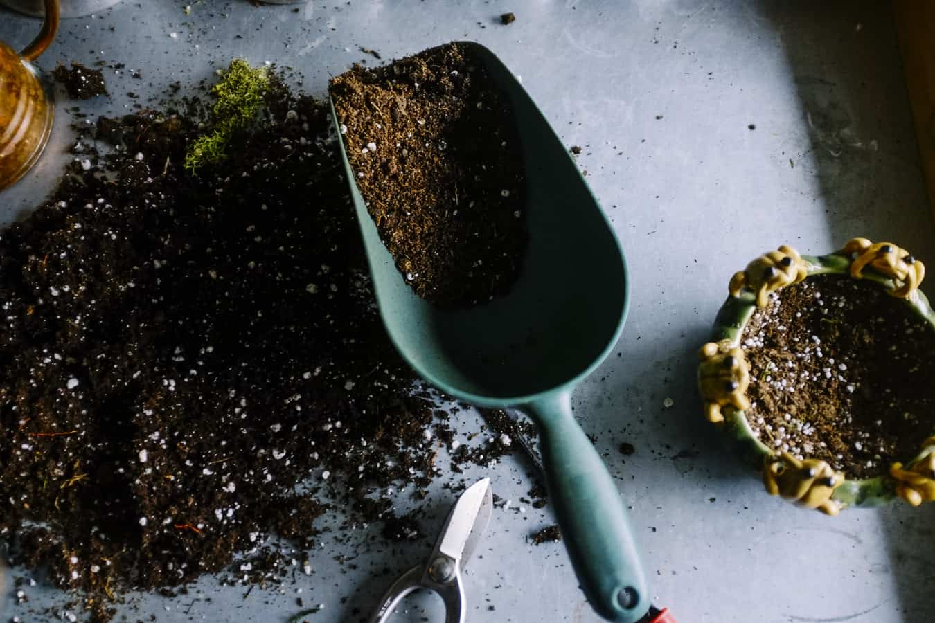 Basic Gardening Essentials: Garden Time Tools Must-Haves