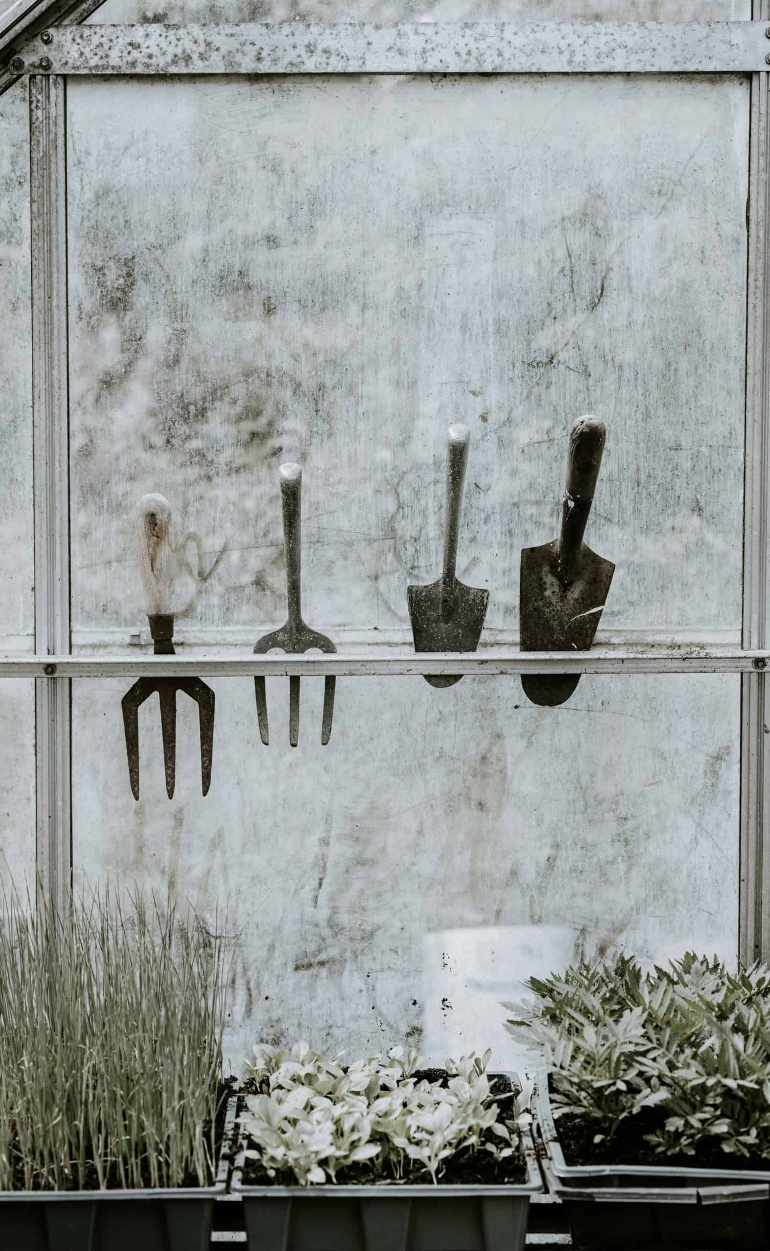 Tools For Best Garden: Require To Maintain