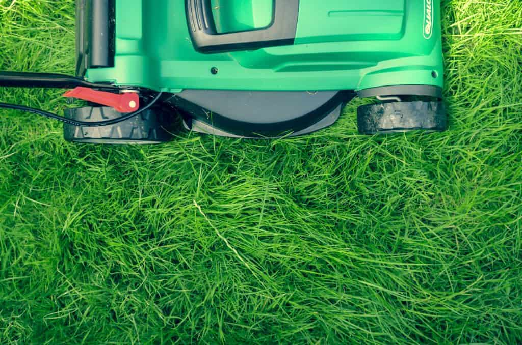 Gardening Tools Can Help You: Cutting Grass