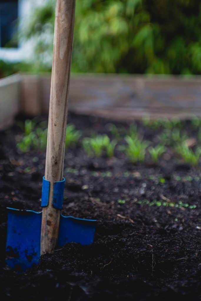 Secret Things You Didn't Know About How To Start A Garden Bed