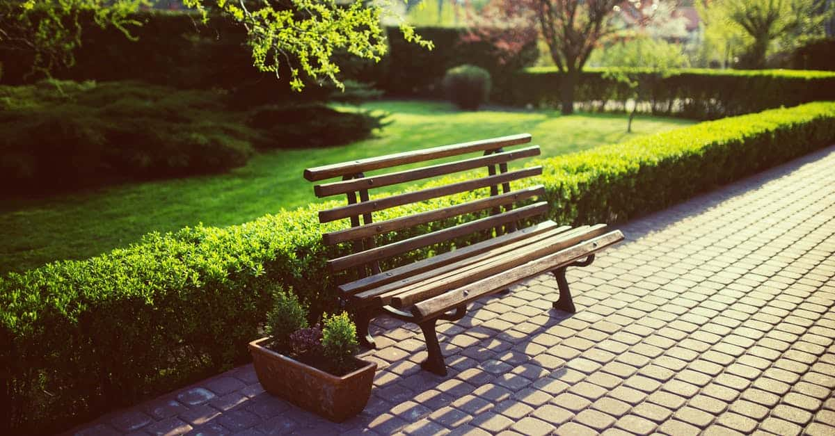 A wooden bench sitting in the middle of a park