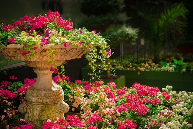 A vase filled with pink flowers in a garden